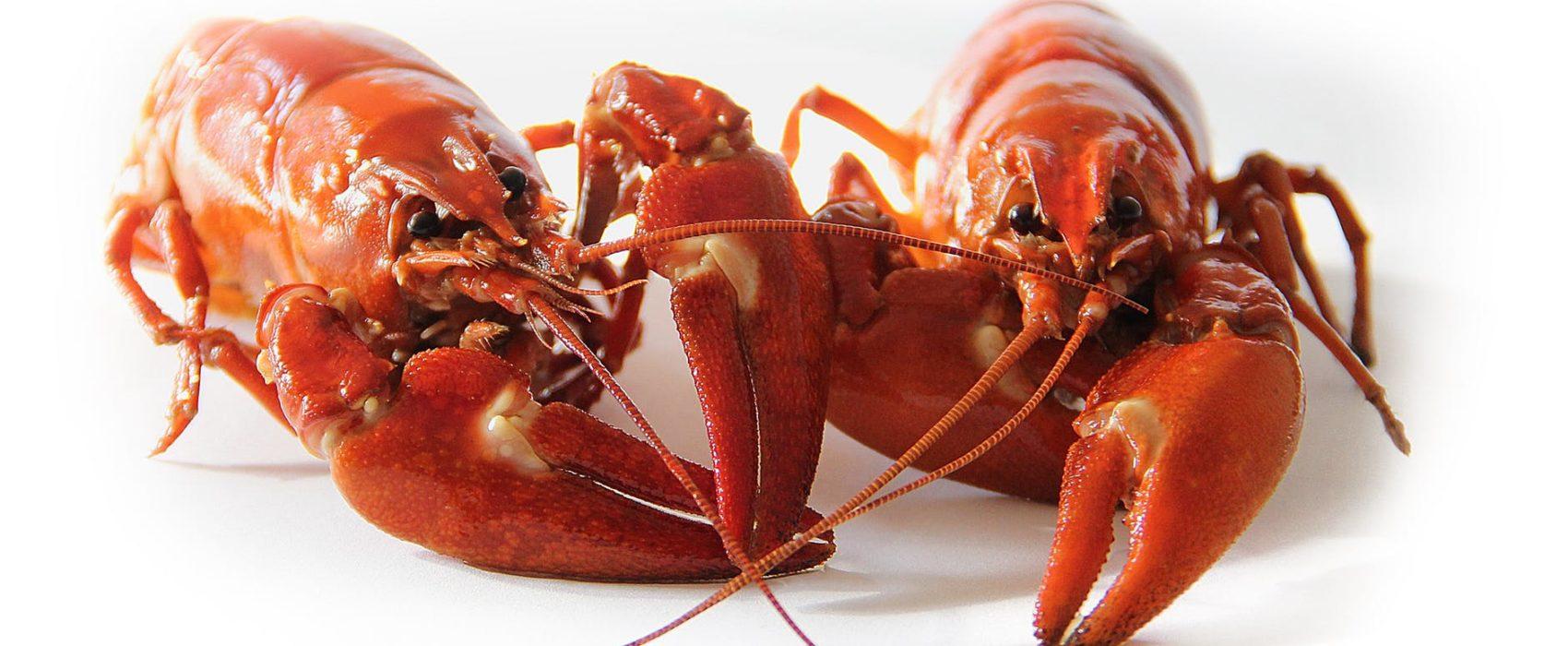 crab dden seafood Dden Accra Ghana